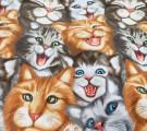 Вафельное полотно. Коты