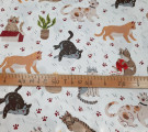 Бязь Ranforce  Коты рыжие